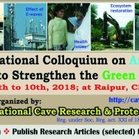 International Colloquium on Ambient Science to Strengthen the Green Economy