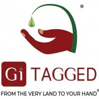 Buy Authentic GITAGGED INDIAN SPICES ONLINE | GITAGGED